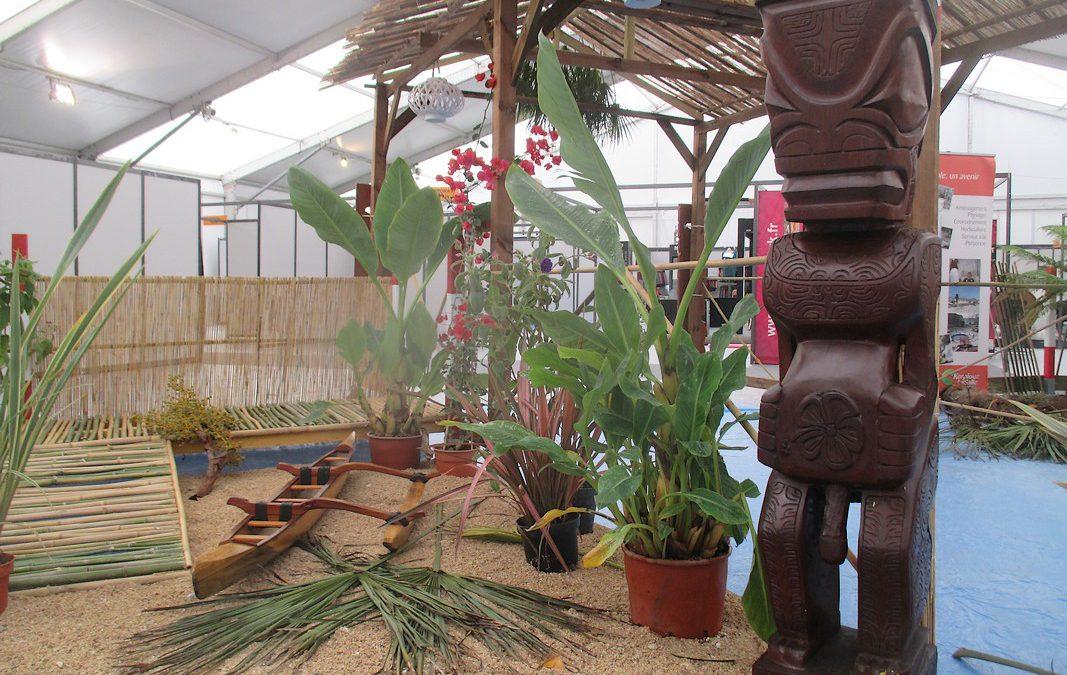 Un jardin polynésien au Chorus de Vannes
