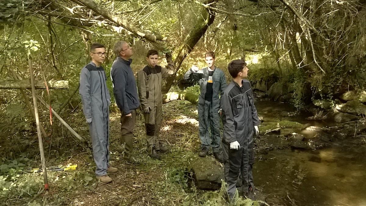 Les Seconde NJPF découvrent la vie de la rivière