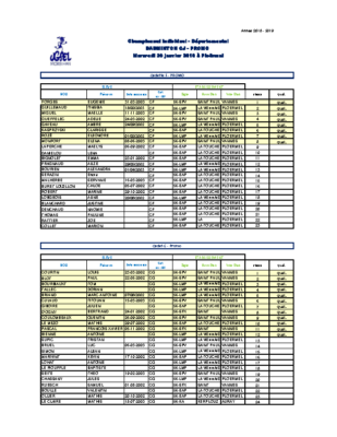 resultats-badminton-cj-ind-promo