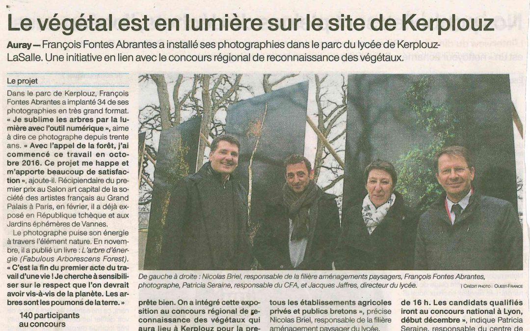 Le végétal est en lumière sur le site de Kerplouz
