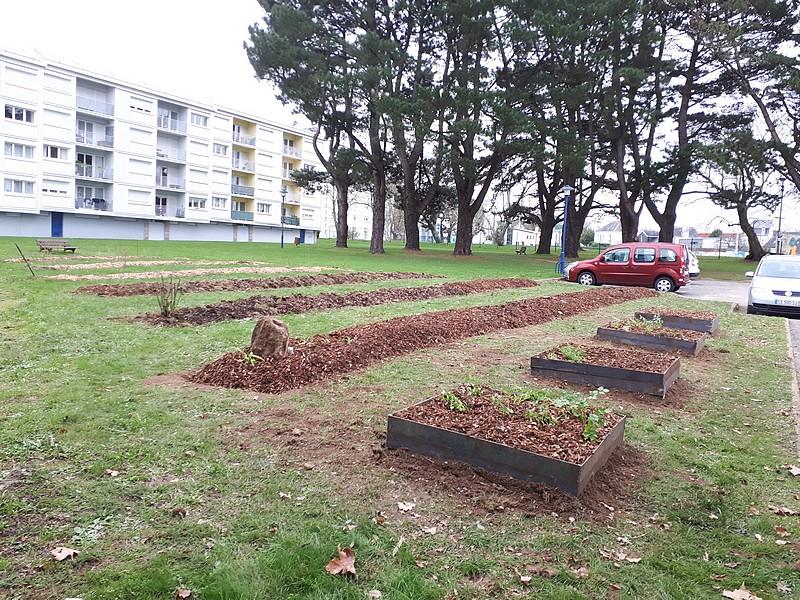 La permaculture s'installe au Parco Pointer à Auray
