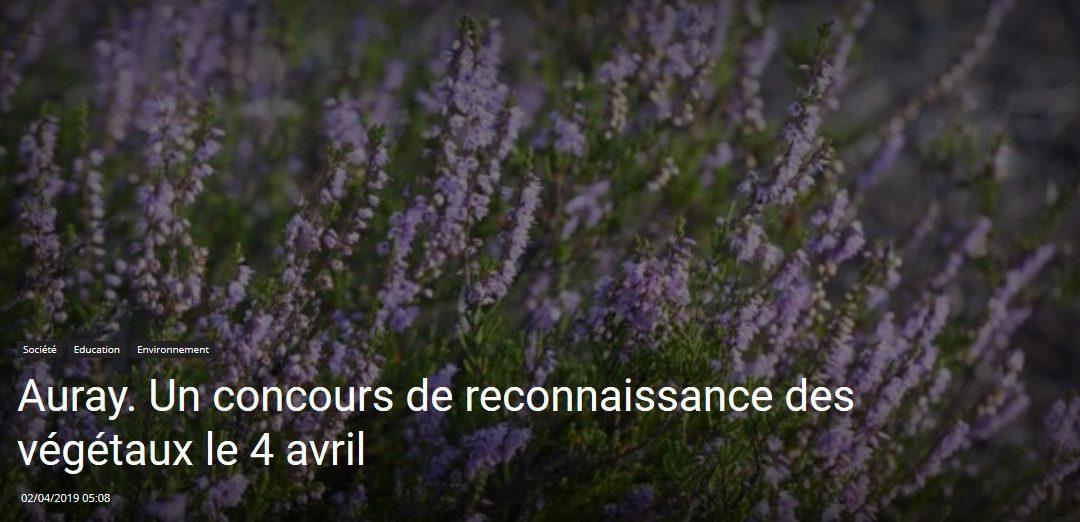 Auray. Un concours de reconnaissance des végétaux le 4 avril