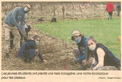 Plescop : Une haie bocagère créée par les étudiants (pour le 2ème article : cliquez sur l'image pour accéder au site)